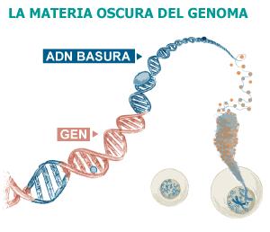 Segunda Revolución Genética: Descubren los secretos ocultos del ADN