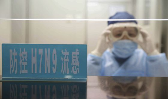 Nueva gripe aviar causa 13 muertes en China