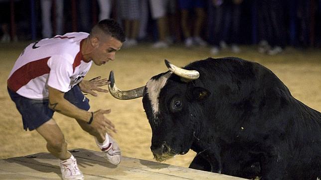 Familia de víctima del toro 'Ratón' pide indemnización de 100.000 euros¡