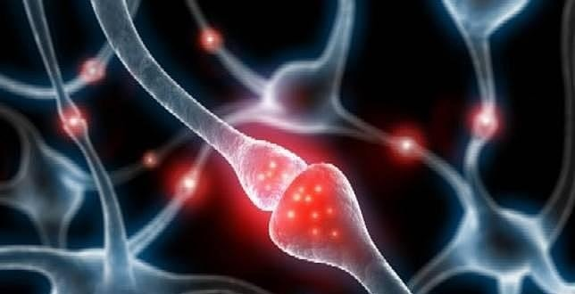 La conmoción cerebral está relacionada con el alzhéimer