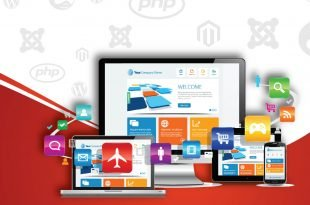 Boston Unisoft Technologies as Web and App Developer