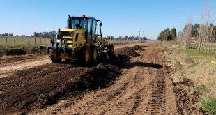 ¿Cómo estabilizar y contener suelos?