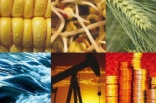 Trading de materias primas en el mercado americano